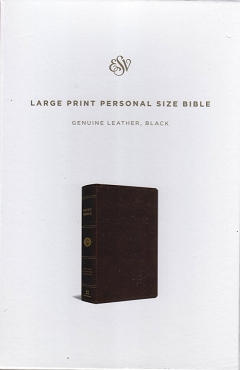 LARGE PRINT PERSONAL SIZE BIBLE