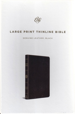 LARGE PRINT THINLINE BIBLE